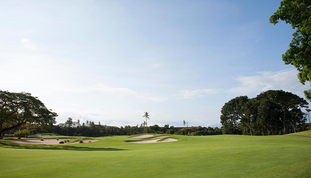 golfnew2