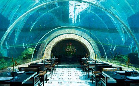 koral kepinski