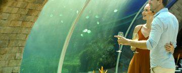 koral kempinski