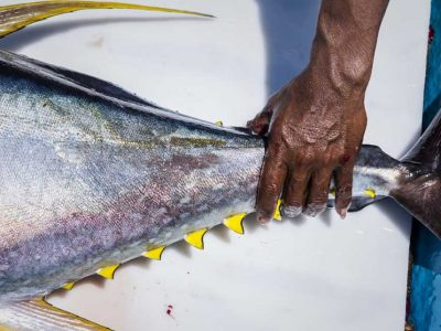 Bali Sustainable Seafood