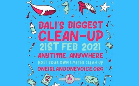 Bali Cleanup